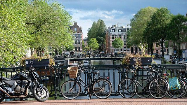 holandeses bitcoin